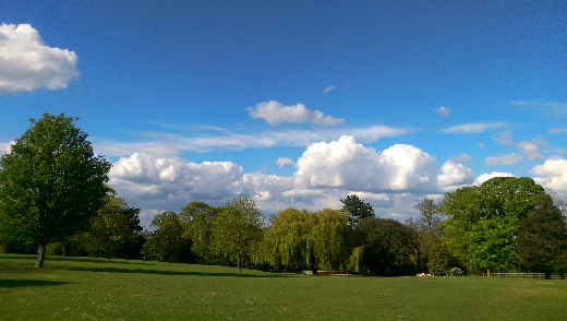 Springfield Park view 1