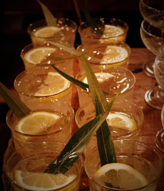 Gin and tonics made from foraged tonic water